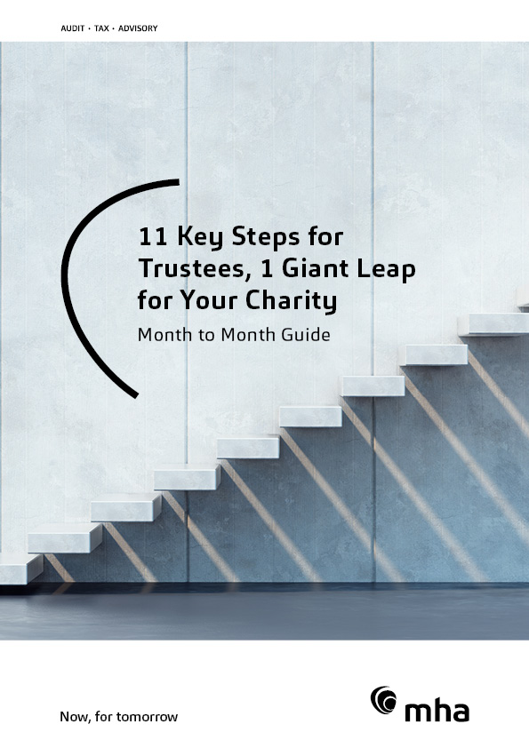 11 Key Steps for Trustees, 1 Giant Leap for Your Charity
