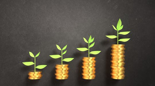 Securing investment to help your business grow